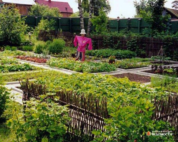 Сад и огород – весенние работы